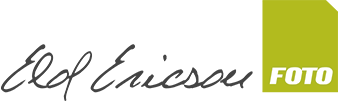 Elof Ericson Foto logo